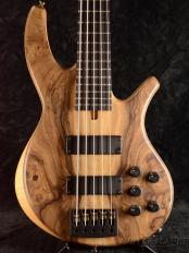 Progress Standard Bolt-on 5 -Figured English Walnut/Alder-【48回金利0%対象】【全国送料無料】