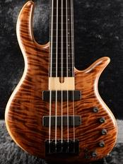 Gold Series E-volution 5 Fretless -Curly Redwood Top-【48回金利0%対象】【全国送料無料】