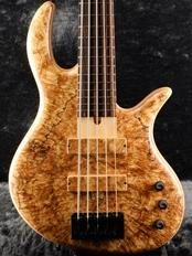 Gold Series E-volution SLC 5 -Spalted Maple- 【Steve Lawson Custom】【48回金利0%対象】【全国送料無料】